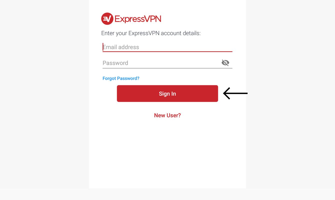 Geben Sie Ihre E-Mail und Ihr Passwort ein.