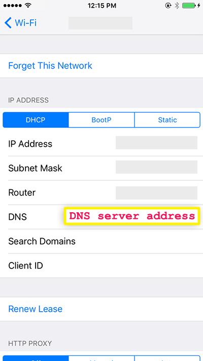 enter the dns server address